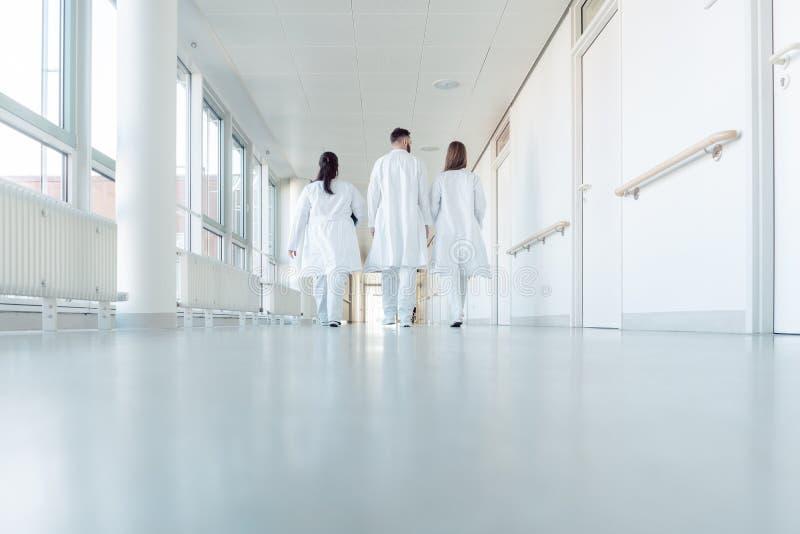 Drie artsen die onderaan een gang in het ziekenhuis lopen royalty-vrije stock afbeelding