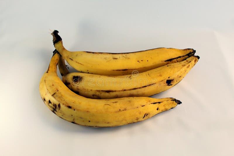 Drie bananen van de aarde royalty-vrije stock foto's