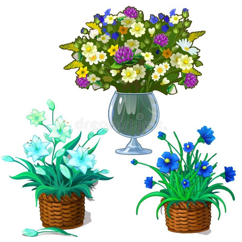 Drie beelden van houseplants in pot en boeket van wildflowers in glasvaas Botanische geplaatste bloemen Vector royalty-vrije illustratie