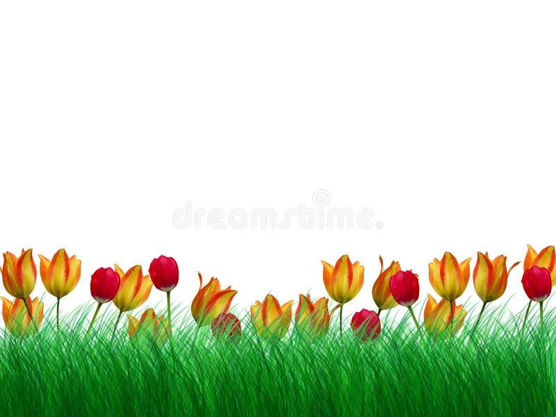 Drie bloemgrens vector illustratie