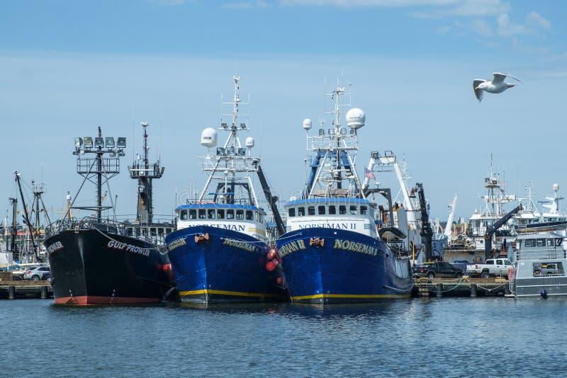 Drie boten en een meeuw stock fotografie