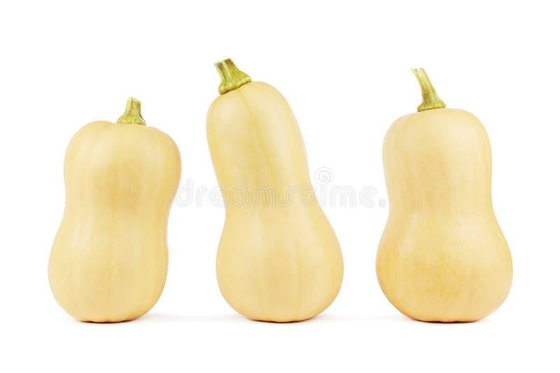 Drie butternutpompoenen royalty-vrije stock afbeeldingen