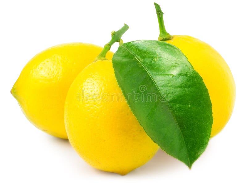 Drie citroenen die op wit worden geïsoleerdt royalty-vrije stock foto