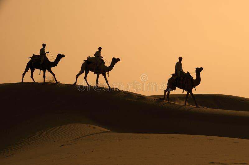 Drie die Kamelen en Jockeys tegen D worden gesilhouetteerd royalty-vrije stock foto's