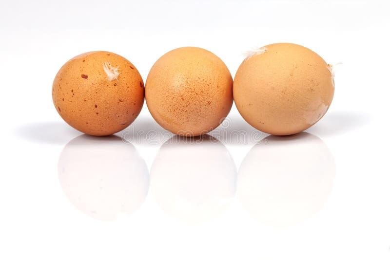 Drie eigengemaakte organische eieren die op wit worden geïsoleerd royalty-vrije stock foto's