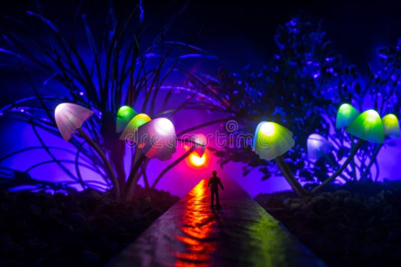 Drie fantasie gloeiende paddestoelen in geheimzinnigheid donker bosclose-up Mooi macroschot van magische binnen verloren paddesto royalty-vrije stock foto's