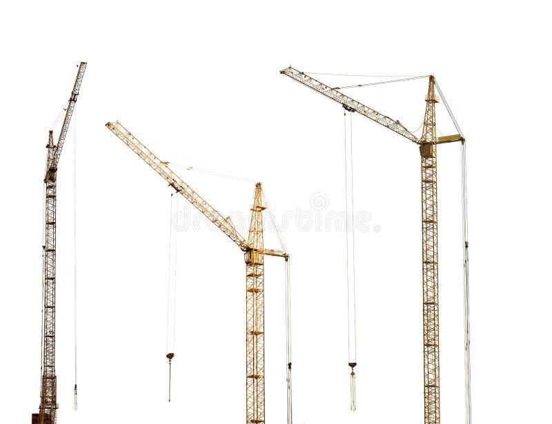 Drie geïsoleerde donkere gouden hoogtekranen royalty-vrije stock foto's