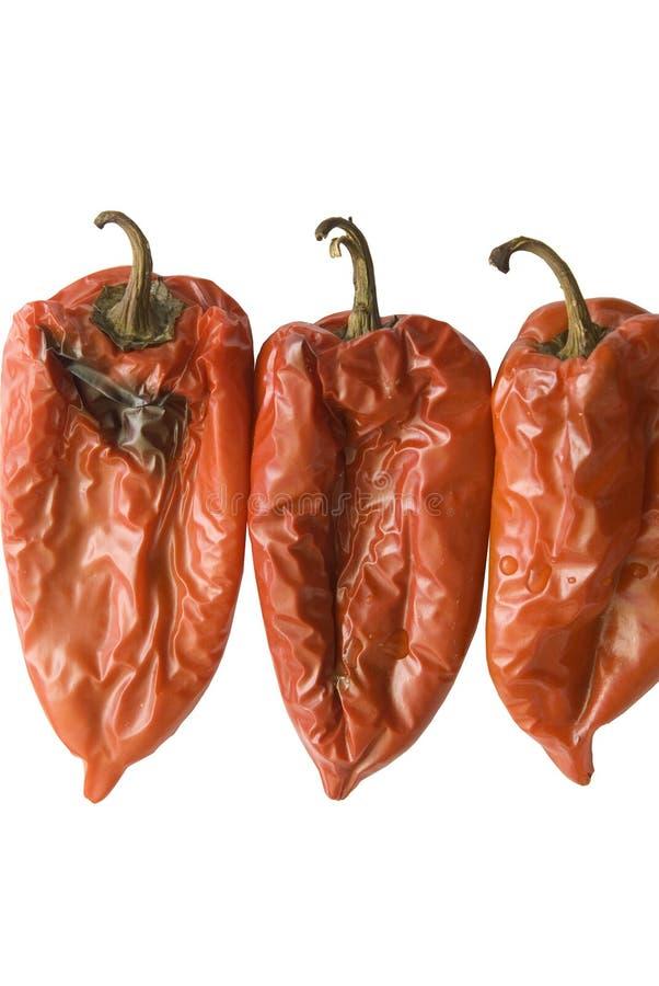 Drie gebakken Spaanse pepers stock foto's