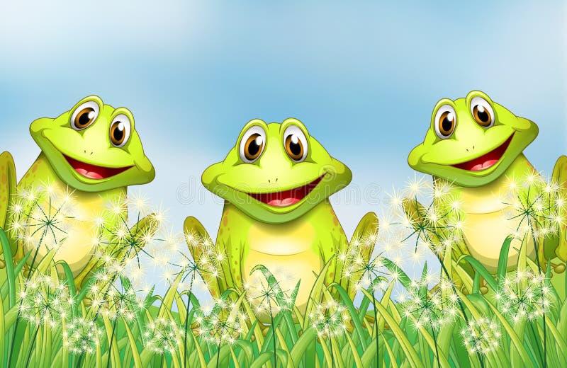Drie gelukkige kikkers in de tuin vector illustratie