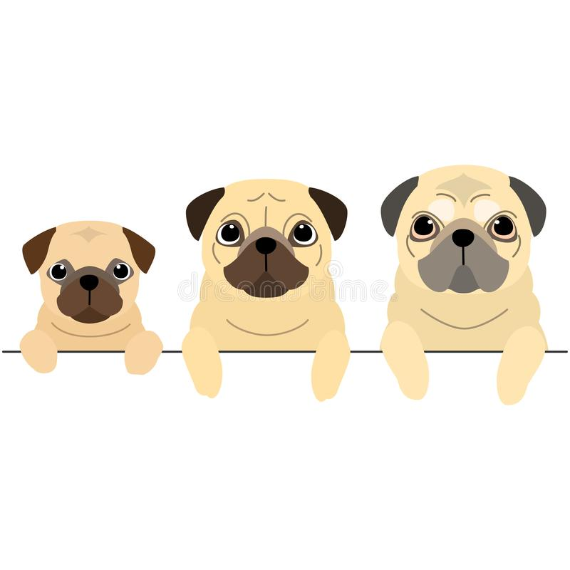 Drie generaties van Pugs grens stock illustratie