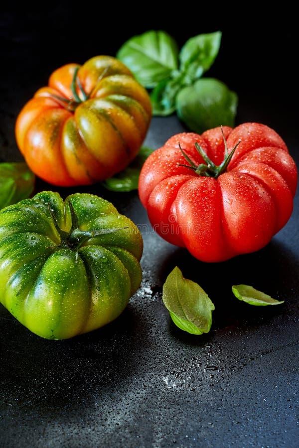 Drie gezonde natte verse tomaten met exemplaarruimte royalty-vrije stock foto's