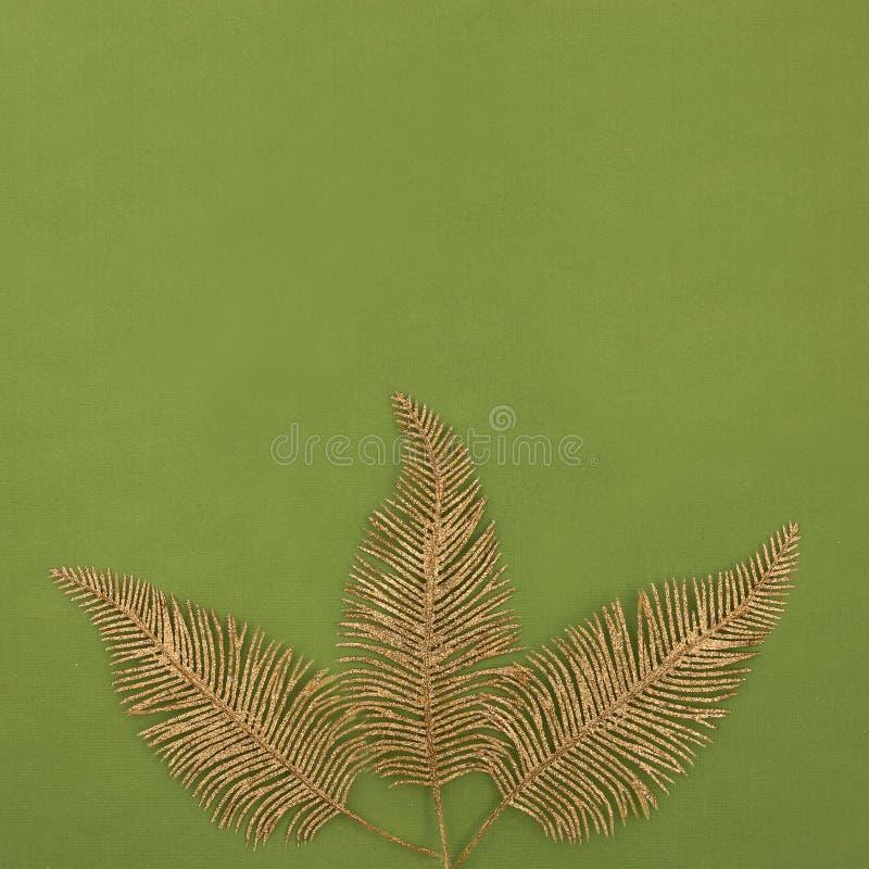 Drie gouden glanzende veren op a freen achtergrond stock afbeelding