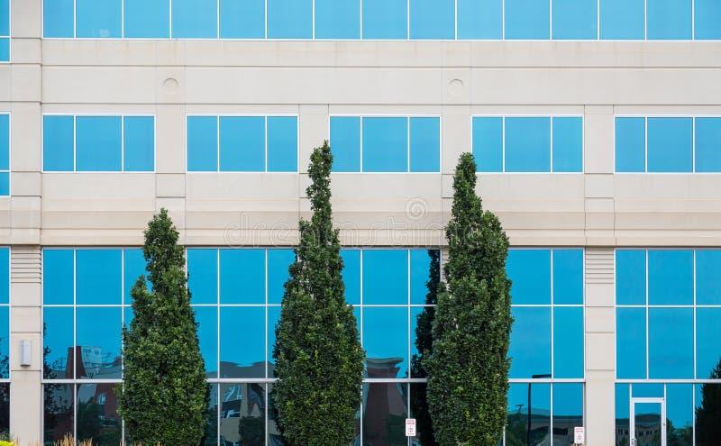 Drie Groene Bomen door Blauwe Vensters royalty-vrije stock foto