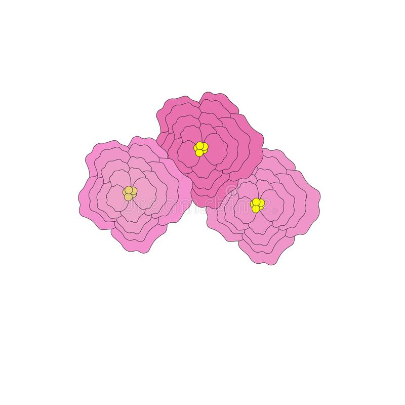 Drie grote grote en mooie pioenbloemen royalty-vrije illustratie