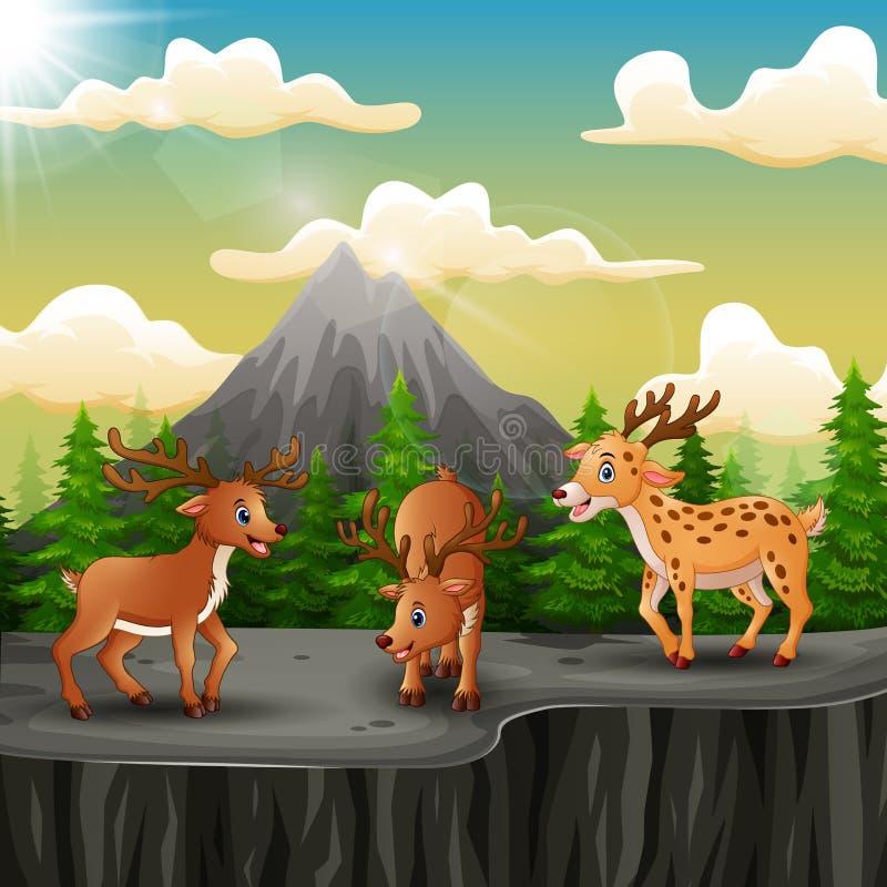 Drie hertenbeeldverhaal op de berg een klip royalty-vrije illustratie