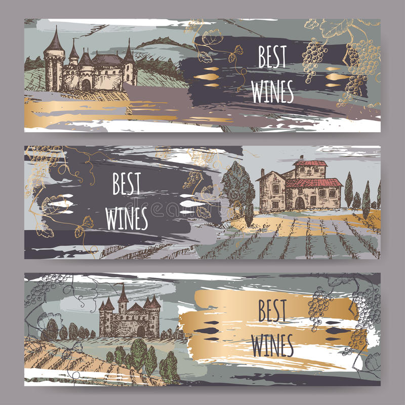 Drie het etiketmalplaatjes van de kleurenwijn met kastelen, wijngaardlandschappen, wijnstok royalty-vrije illustratie