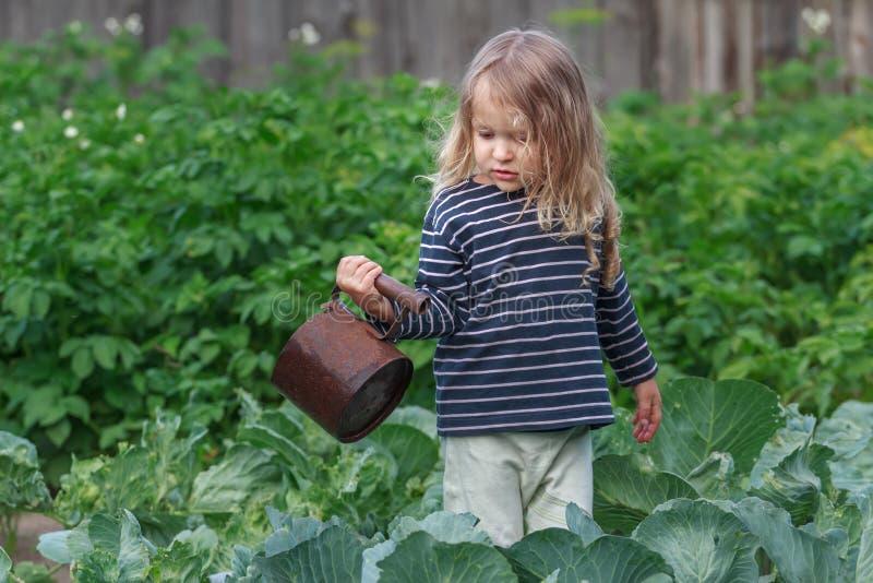 Drie jaar oud weinig tuinman die haar peperinstallaties in groene de zomertuin water geven royalty-vrije stock fotografie