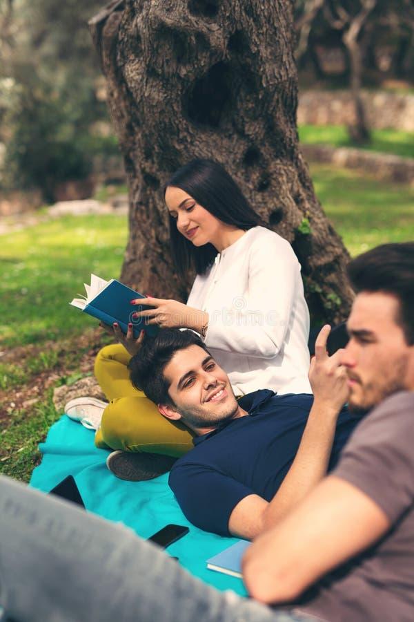 Drie jonge vrienden op picknick royalty-vrije stock afbeelding