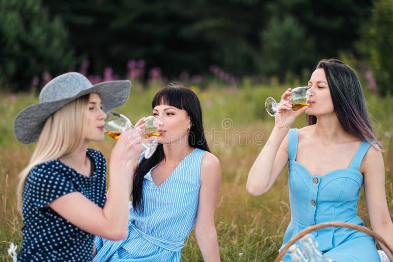Drie jonge vrouwen, blond, donkerbruin en met geverft haar in blauwe kleding, en hoeden, zitten op plaid en drinken wijn van royalty-vrije stock fotografie