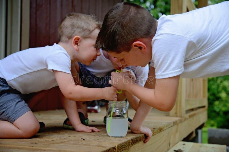 Drie jongens die één limonade proberen te delen royalty-vrije stock foto's