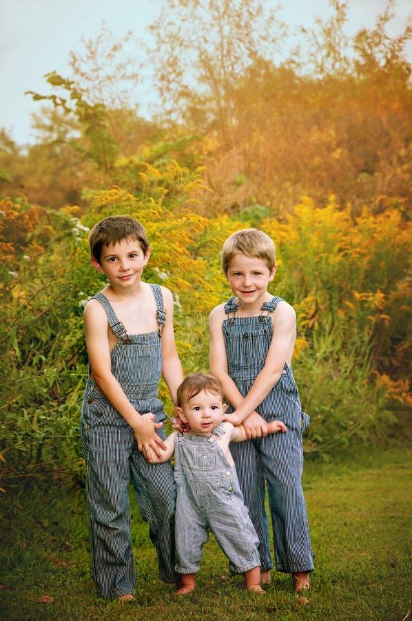Drie jongens die de Herfstportret bevinden zich stock fotografie