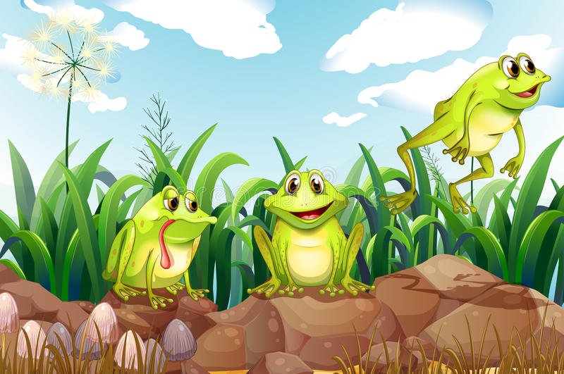 Drie kikkers boven de rotsen stock illustratie
