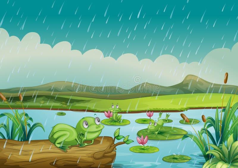 Drie kikkers die van de regendruppels genieten royalty-vrije illustratie