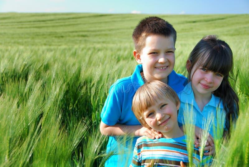 Drie kinderen op een gebied royalty-vrije stock afbeeldingen
