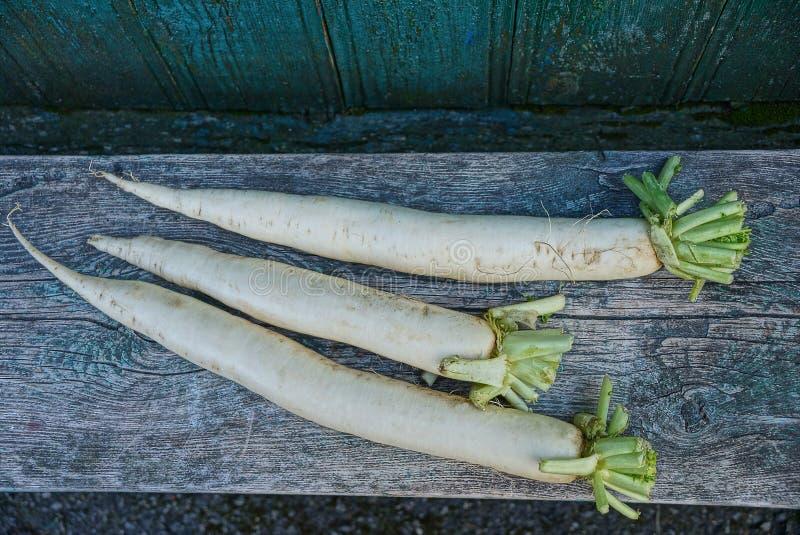 Drie lange witte radijzen liggen op een grijze houten lijstraad royalty-vrije stock foto's