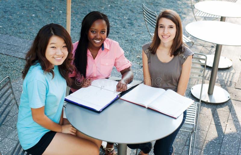 Drie meisjes buiten het bestuderen stock afbeeldingen