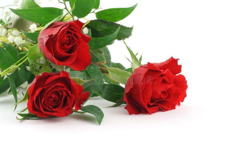 Drie mooie kastanjebruine rozen met decoratie #2 stock afbeeldingen