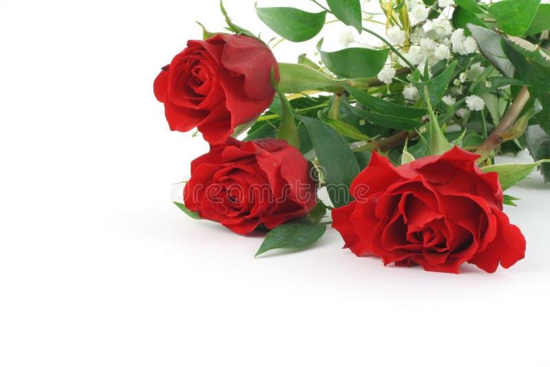 Drie mooie kastanjebruine rozen met decoratie stock foto's