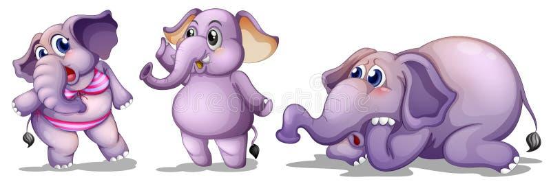 Drie olifanten stock illustratie