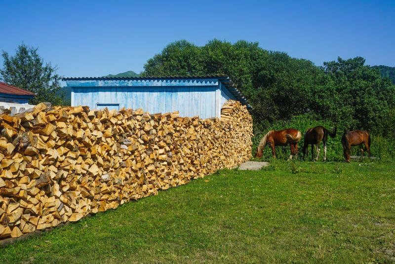 Drie paarden dichtbij brandhout royalty-vrije stock foto's