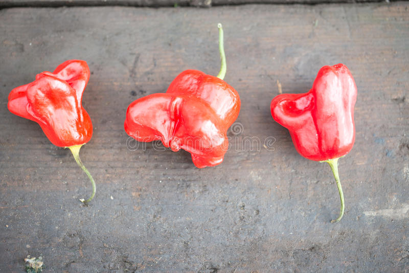 Drie Peper van de Hoedenspaanse pepers van de Rode Bischop op Houten Achtergrond stock afbeelding