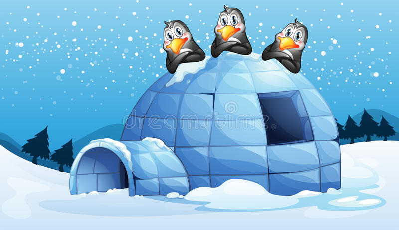 Drie pinguïnen boven de iglo royalty-vrije illustratie