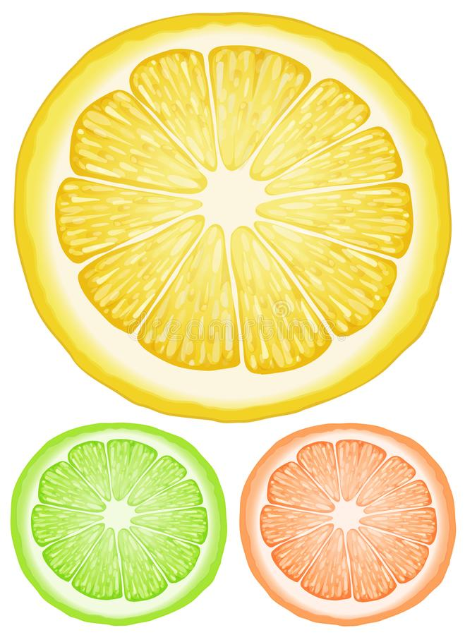 Drie plakken van citroen in verschillende kleuren vector illustratie