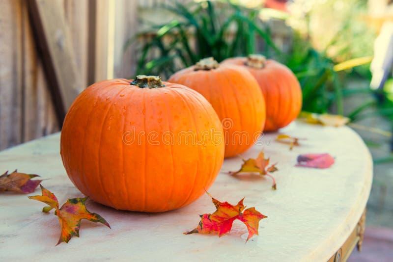Drie pompoenen met dalingsbladeren op steenlijst met gaarden seizoengebonden achtergrond De herfstoogst, dankzegging, Halloween-c royalty-vrije stock foto's