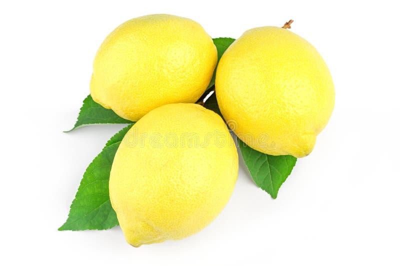 Drie rijpe verse citroenen met bladeren op een witte achtergrond royalty-vrije stock fotografie