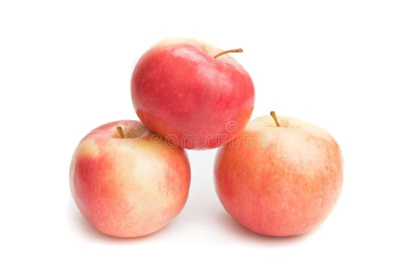 Drie rode appelen royalty-vrije stock foto