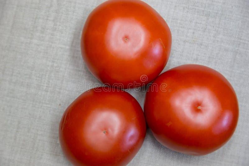 Drie rode rundvleestomaten stock foto
