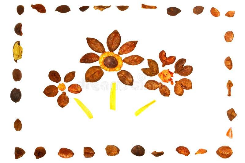 Drie sierbloemen in frame stock illustratie