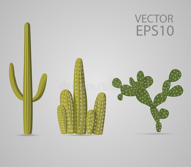 Drie soorten groene cactusreeks royalty-vrije illustratie