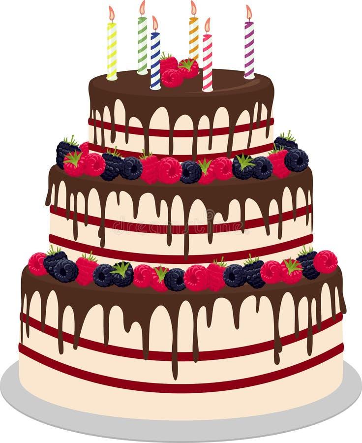 Drie-tiered die huwelijk of verjaardagscake in chocolade, met paspberries en bosbessen wordt verfraaid op een wit wordt geïsoleer royalty-vrije illustratie