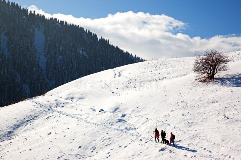 Drie toeristen en hond in de winterbergen stock afbeelding