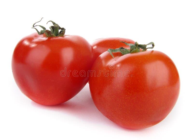 Drie tomaten royalty-vrije stock afbeelding