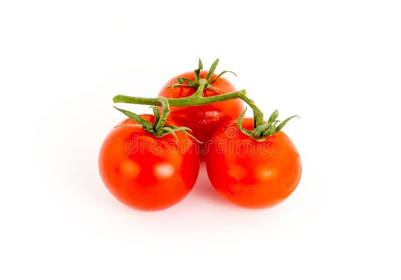 Drie tomaten rode sappige vruchten tak van groen op witte achtergrond, groentensymbool uit één stuk van gezond voedselingrediënt royalty-vrije stock foto's