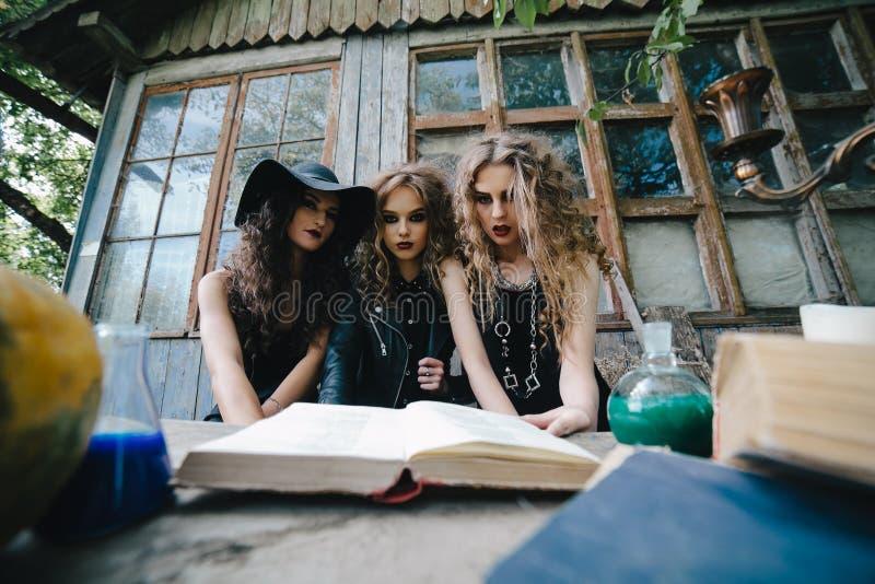 Drie uitstekende heksen voeren magisch ritueel uit royalty-vrije stock fotografie