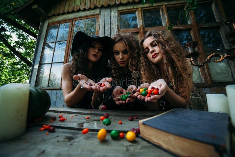Drie uitstekende heksen voeren magisch ritueel uit stock foto's