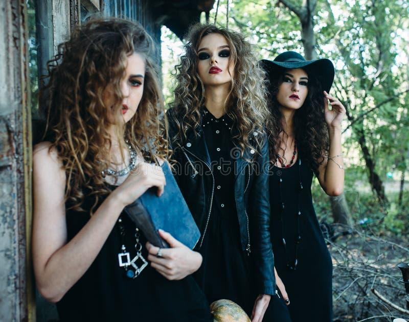 Drie uitstekende vrouwen als heksen royalty-vrije stock afbeeldingen